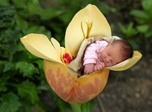 La Ronde des Fleurs : des fleurs pour une naissance